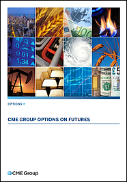 Guide to Options on Futures